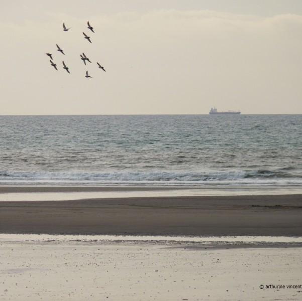 Carré de mer du Nord