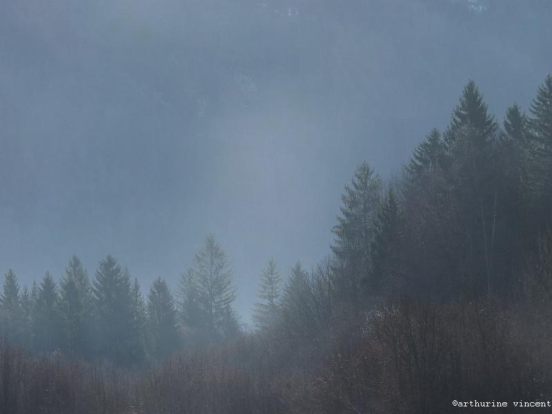 Au loin la brume