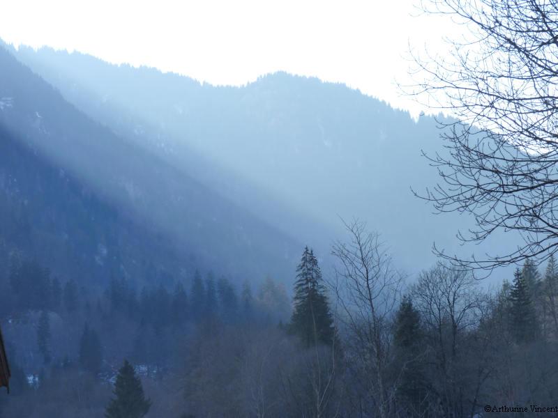 Aurore alpine