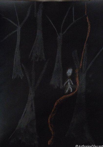"""""""j'appartiens aux forêts et à la solitude"""""""