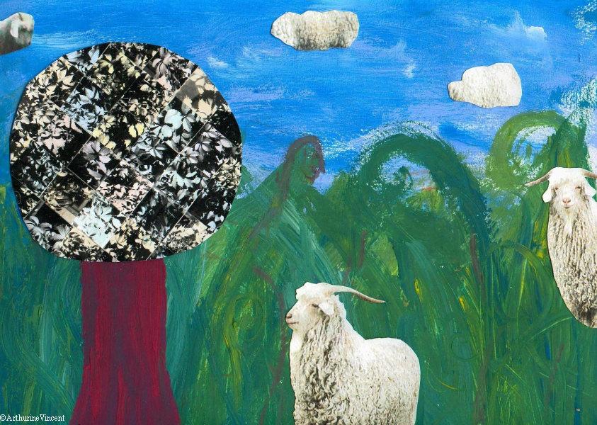 Chèvres angora (Vendu)
